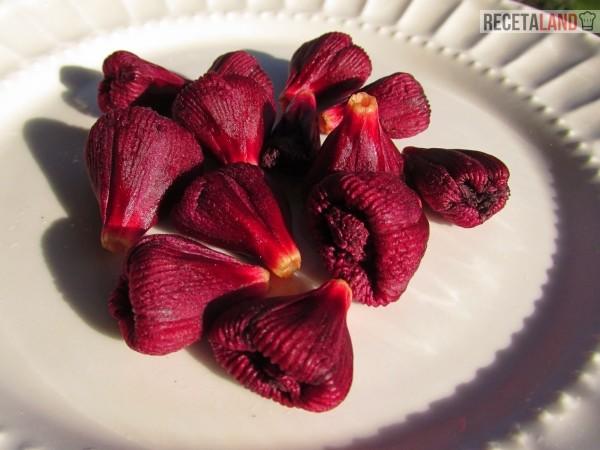 Cálices de flor de jamaica recolectados